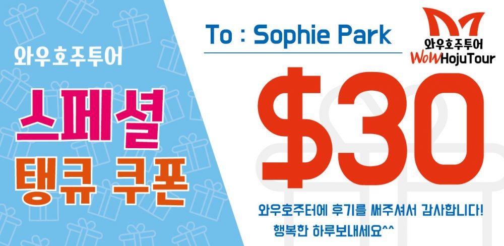 WoW Hojutour Coupon.jpg